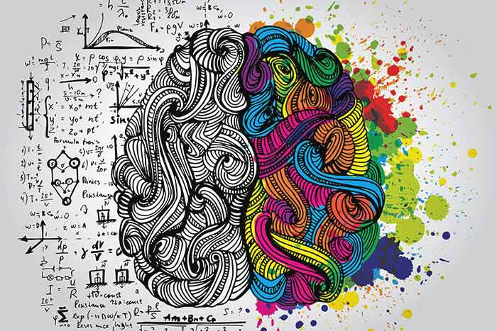 Creativity in the brain
